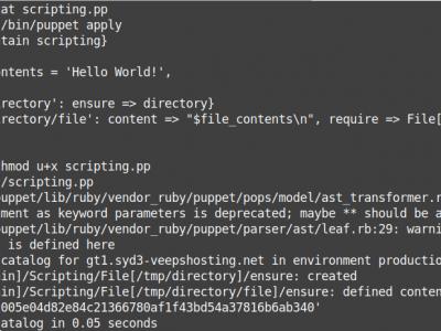 Puppet DSL scripting