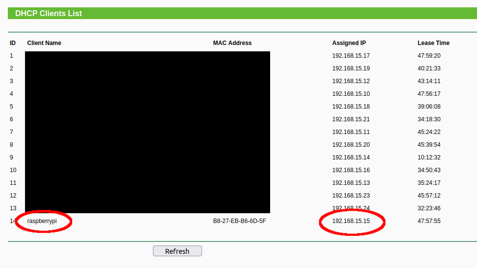 Raspberry Pi acquired IP address using DHCP